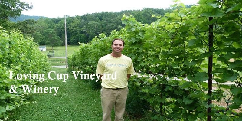vert-de-vin-une-loving-cup-vineyard-&-winery-organic-farming-virginia